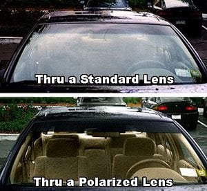 Polarized Lens Explanation